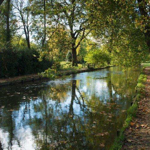 Mottisfont River