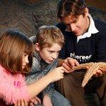 Blue Reed Aquarium Tutor