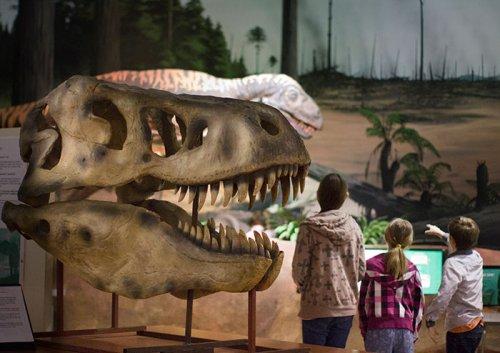 dinosaur-museum-sculpture