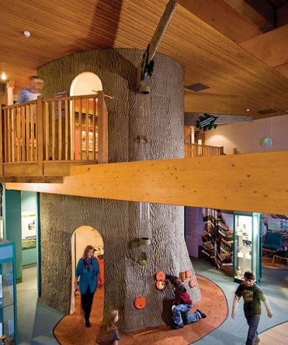 tree-hampshire-historic-locations