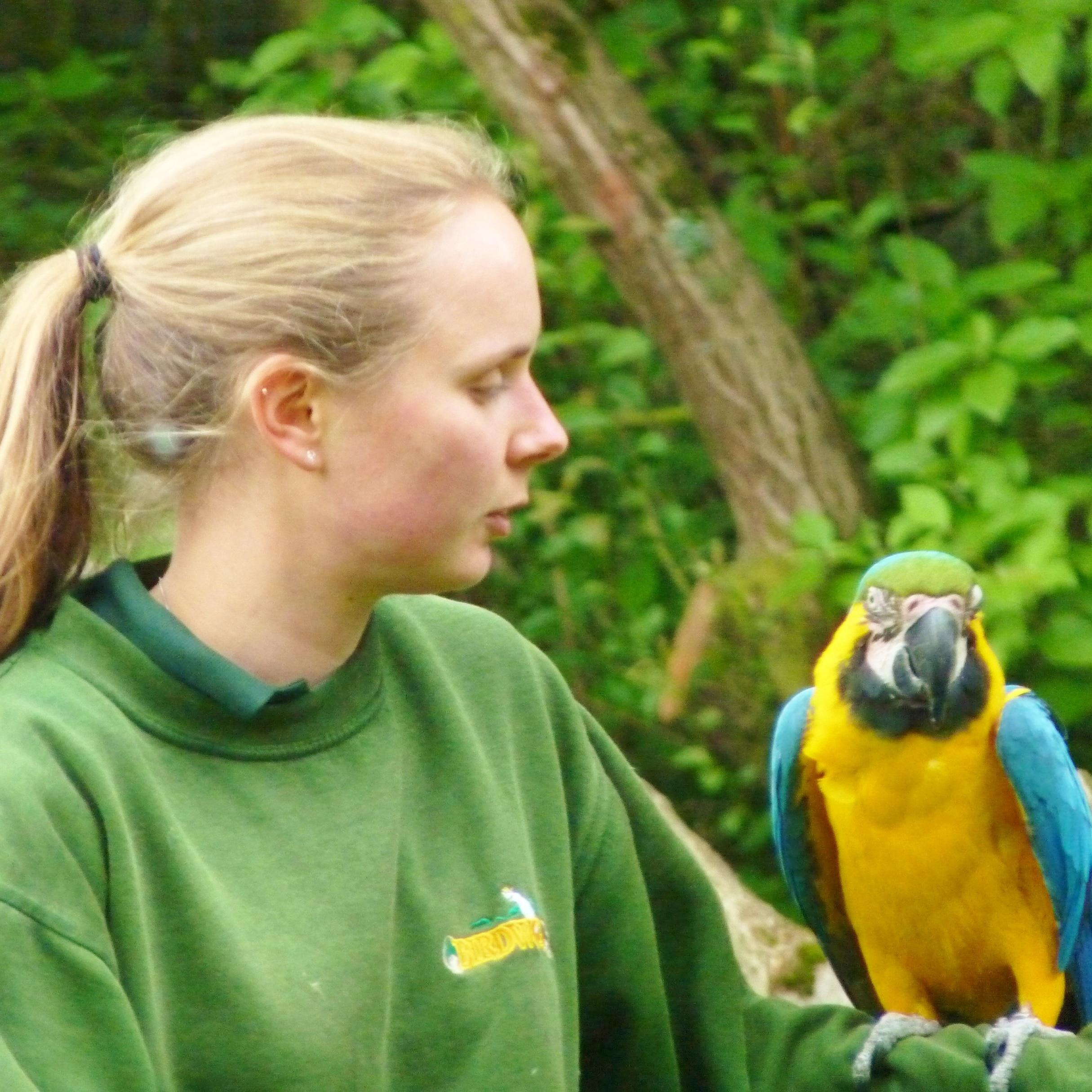Love Your Zoo Week at Birdworld - Hampshires Top Attractions