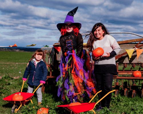 Spooky Farm Fun & Pumpkin Patch at Tapnell Farm Park