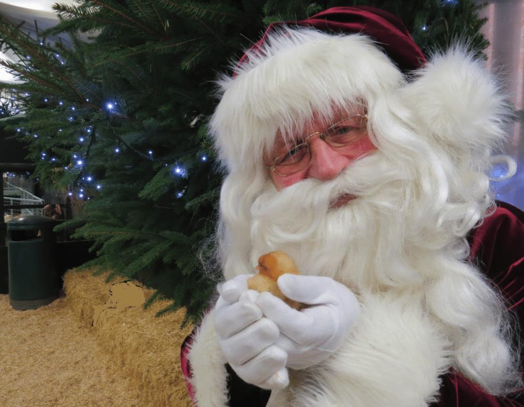 Longdown Farm Christmas Barn
