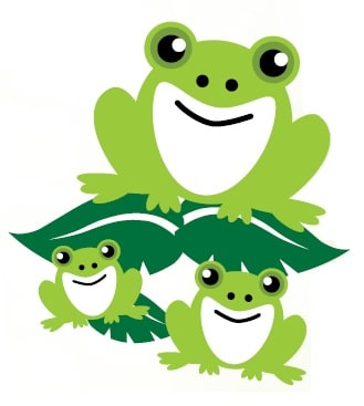 Pond Dipping - Frogs