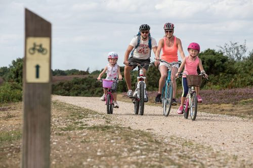 The fun never stops at New Forest Activities