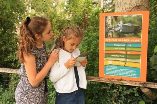 Top Trumps Trail at Hawk Conservancy Trust