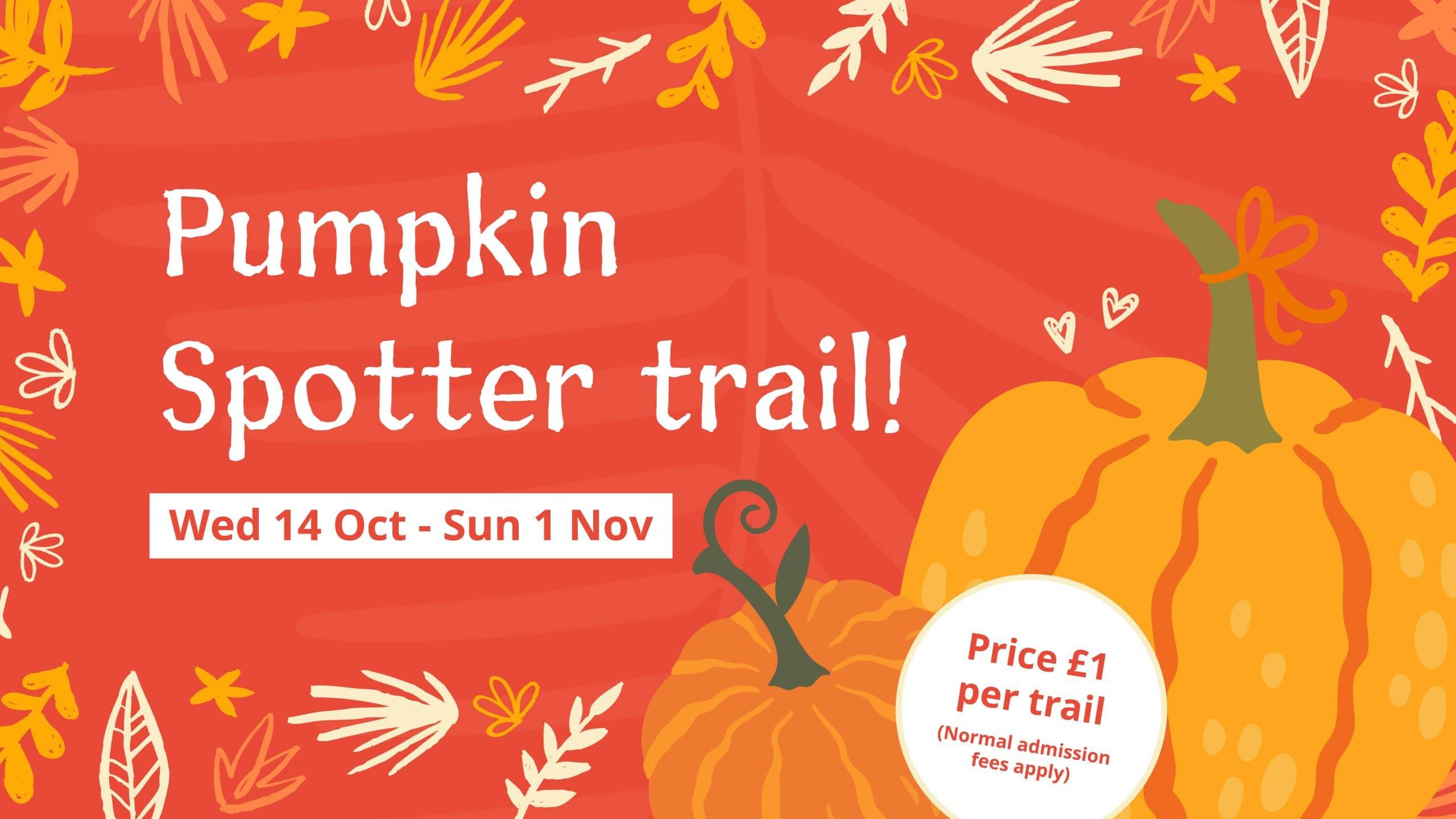 Hilliers-Pumpkin-trail