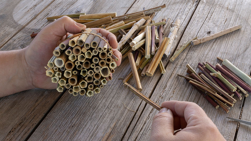 Bug Hotel Making at Exbury Gardens in the New Forest